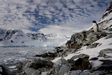 Fotó: Ollysuzi.com